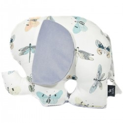 Lucky Guy Pillow Grey Wings